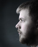 Portrait of young man with beard Stock Images
