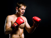 Portrait of young man with boxing  gloves Royalty Free Stock Photos