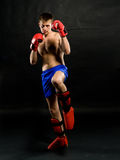 Portrait of young man with boxing  gloves Royalty Free Stock Photo