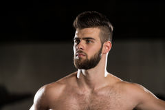 Portrait Of A Young Man In Gym Royalty Free Stock Images