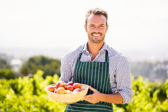 Portrait of young man holding apple basket Royalty Free Stock Image