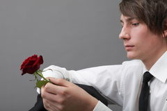 Portrait young man and rose enamoured love Royalty Free Stock Photography