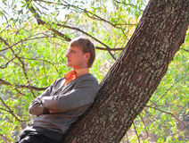 Portrait of a young man standing in forest Stock Photography