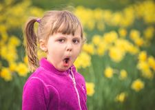 Portrait of a mischevious girl. Portrait of a young mischievous girl making strange face with the spring garden background of yellow daffodils royalty free stock image