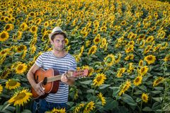 Guitar player in sunflower field Royalty Free Stock Image