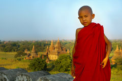 Portrait of a young monk Royalty Free Stock Image