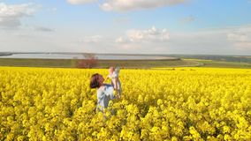 Aerial portrait of young mother with newborn baby having fun in yellow field. Love, family, joy concept stock footage