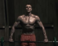 Muscular weight lifter. Portrait of young muscular man lifting weights in the gym, the image was desaturated ang toned Stock Photos