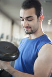 Portrait of young muscular man lifting weights in the gym Stock Images