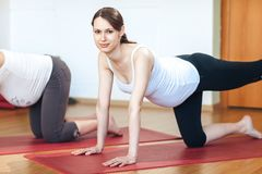 Portrait of young pregnant fitness model in sportswear doing yoga or pilates training, Cow Pose, Bitilasana, asana for flexible sp royalty free stock photography
