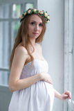 Portrait of the young pregnant woman Stock Photography