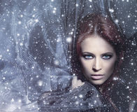 Portrait of a young redhead woman in blowing silk. Portrait of a young and attractive redhead Caucasian woman in blowing silk. The imgage is taken on a snowy stock image