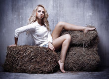 Portrait of the young sexual girl sitting on the hay, on textura Royalty Free Stock Photo