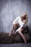 Portrait of the young sexual girl sitting on the hay, on textura Royalty Free Stock Photos