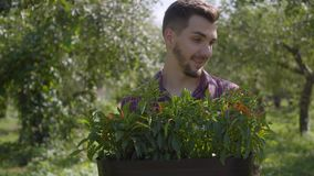 Portrait of young smiling bearded farmer holding a pot of flowers in hands walking through the summer garden. Concept of. Portrait of young smiling bearded stock footage