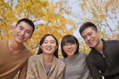 Portrait of young smiling group of people in park in autumn Royalty Free Stock Image