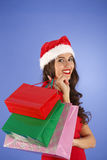 Portrait of a young smiling woman doing shopping before christma Stock Photography