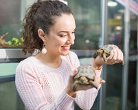 Portrait of young smiling woman holding turtles Royalty Free Stock Photos
