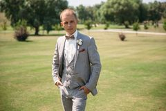 Portrait of a young stylish man in a classic business suit in gray with a white shirt and a bow tie. Young guy. Businessman. The concept of beautiful men`s Royalty Free Stock Photo