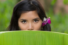 Portrait of a young Vietnamese woman Royalty Free Stock Image