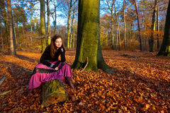 Portrait of young woman. In autumn park Royalty Free Stock Photos
