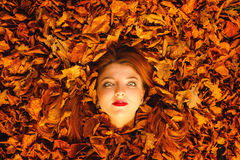 Portrait of young woman in autumn leaves. Stock Image