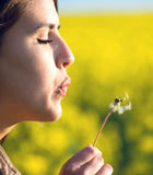 Portrait young woman blowing a dandelion. In spring Royalty Free Stock Photo