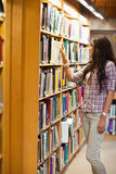 Portrait of a young woman choosing a book Stock Image