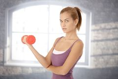 Portrait of young woman with dumbbell Stock Photography