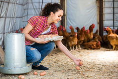 Portrait of young woman farmer holding fresh eggs in hands in he Royalty Free Stock Photo