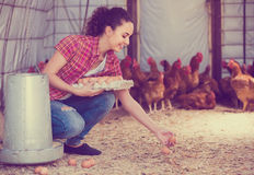 Portrait of young woman farmer holding fresh eggs in hands in he Stock Image