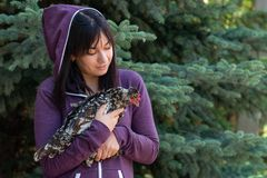 Portrait of a young woman with a feathered friend speckled chicken against a blue spruce. Waist up portrait of a young woman with a feathered friend speckled royalty free stock photography