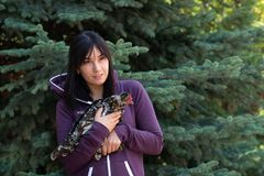 Portrait of a young woman with a feathered friend speckled chicken against a blue spruce. Waist up portrait of a young woman with a feathered friend speckled stock image