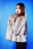 Portrait of young woman in fur blue background Stock Photo