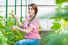Portrait of young woman gardening Stock Images