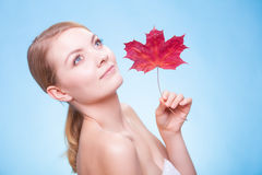 Portrait young woman girl with red maple leaf. Stock Image