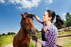 Portrait of young woman grooming horse in summer. Close-up portrait of young woman grooming bay horse, standing next to enclosure fence in summer Royalty Free Stock Photography