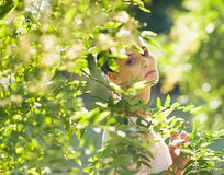 Portrait of young woman hiding in foliage Royalty Free Stock Photography