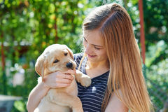 Portrait of Young woman holding on hands puppy Labrador Stock Images