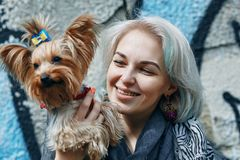 A Portrait of a young woman with a little dog. Portrait of a young woman with a little dog stock image