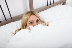 Portrait of young woman peeking over quilt Royalty Free Stock Photos