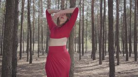 Portrait young woman in red dress dancing in the forest landscape. Lady touching a tree. Concept of female tenderness stock video