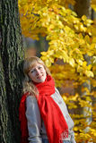 Portrait of the young woman with a red scarf against the background of an autumn tree Royalty Free Stock Photos