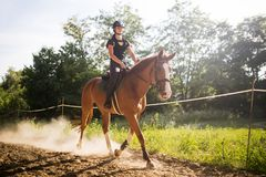 Portrait of young woman riding horse in countryside stock images
