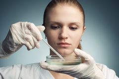 Portrait of young woman - scientist with dropper working Stock Image