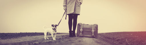 Portrait of young woman with suitcase and dog Stock Images