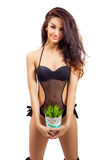 Portrait of young woman taking vase with grass Royalty Free Stock Photography