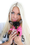 Portrait of young woman with toy-terrier Stock Image