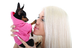 Portrait of young woman with toy-terrier Stock Photography