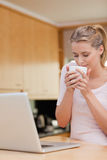Portrait of a young woman using a laptop while drinking tea Stock Photos